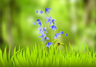 v_trave.jpg